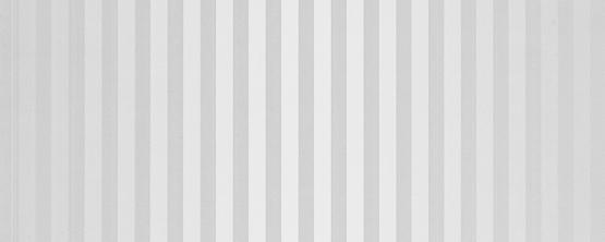 PVC Ламперия DOLCE VITA 25см/8мм SILVER